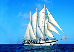 Is Windjammer sailing again or not?