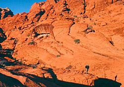 Three wilderness retreats minutes from the Las Vegas Strip