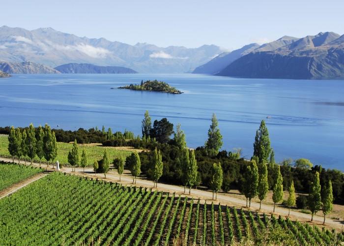 New Zealand's next top wine region