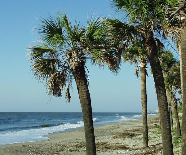 Seaside relaxation on Edisto Island, South Carolina