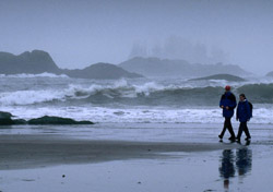 Storm-watch in Tofino, British Columbia, this November