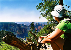 Hoofing it Down Grand Canyon's North Rim