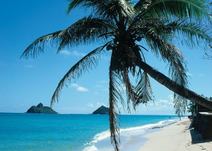 Unbelievable Deals to Hawaii and Bermuda