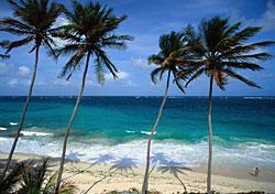 Barbados Bargains? Really?
