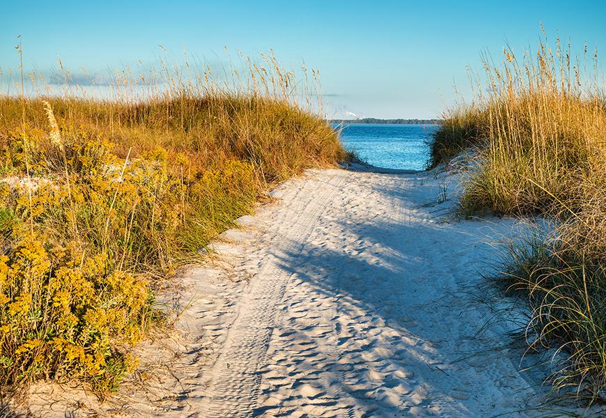 panama city beach florida dunes