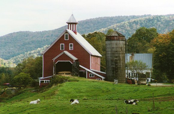 Great For Localvores... Liberty Hill Farm Inn (Rochester, Vermont)