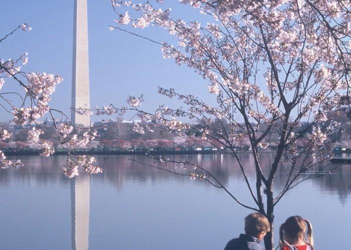 Find Hotels in Washington, D.C.