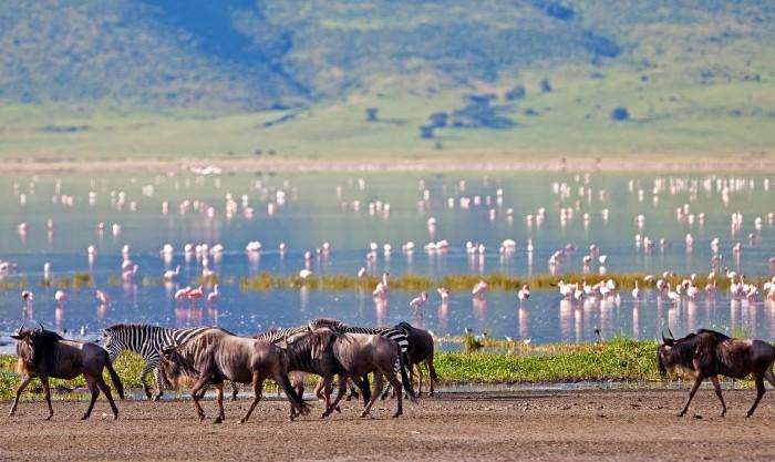 Daily Daydream: Ngorongoro Crater, Tanzania