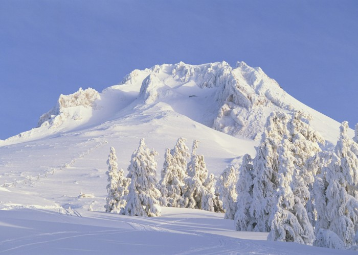 Palmer Snowfield, Oregon: Year-Round Snow