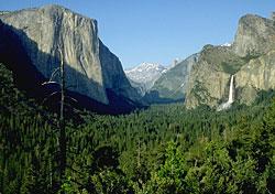 Yosemite's best (and worst) in every season