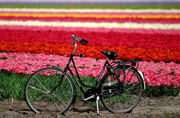 Netherlands: Fourth Place, The World Happiness Report
