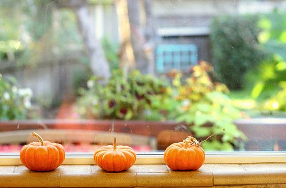 Fabulous Fall Rentals
