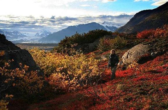 Ultima Thule Lodge, Southeastern Alaska