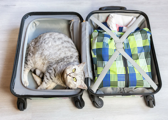 packing tips for tricky items