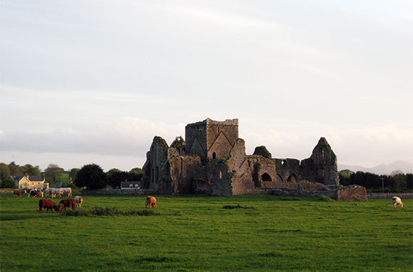 Hore Abbey, County Tipperary, Ireland