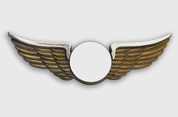Wing Pins for Kids