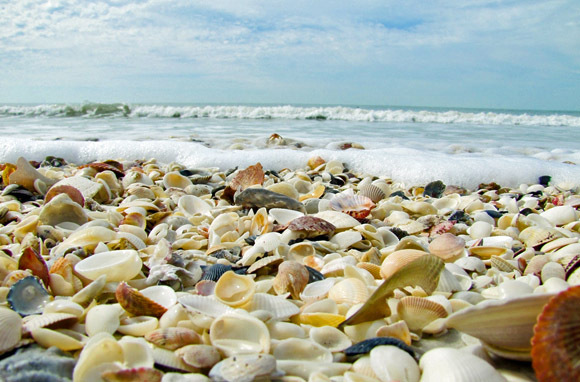 Lighthouse Beach, Sanibel Island, Florida