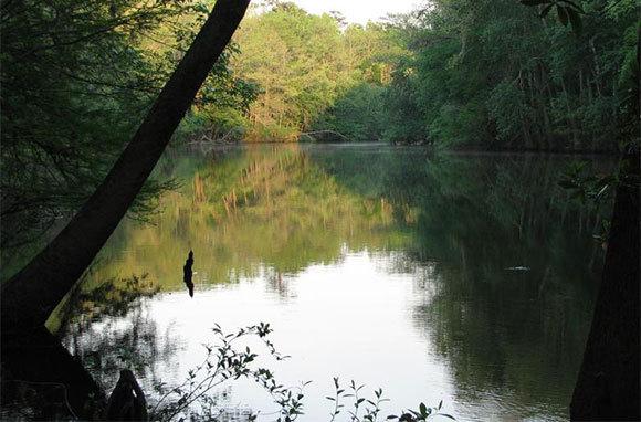 Congaree National Park, South Carolina