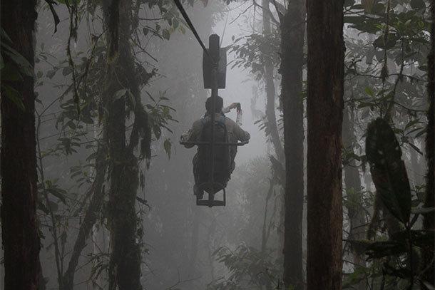 A Wild Kingdom in the Clouds: Inside Ecuador's Mashpi Lodge