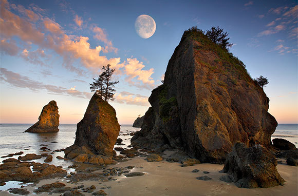 Shi Shi Beach, Washington