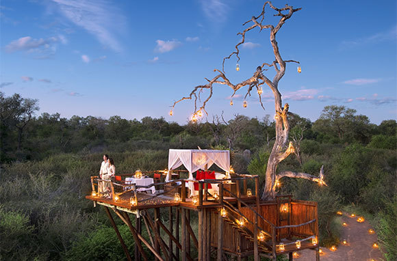 Chalkley Tree House At Lion Sands Game Reserve, South Africa