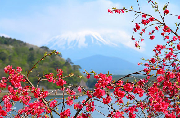 Fuji-Hakone-Izu National Park, Japan