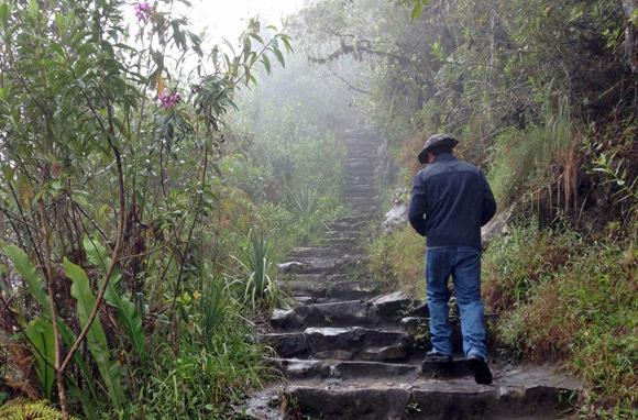 Huayna Picchu (Wayna Picchu)