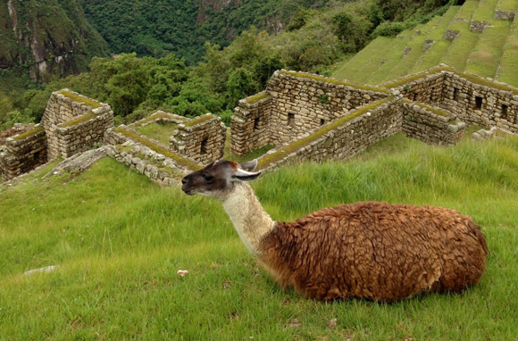 The Many Ways to See Machu Picchu