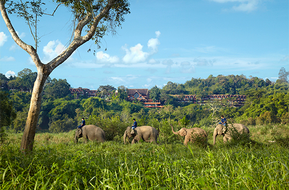 Anantara Golden Triangle Elephant Camp & Resort, Chiang Rai, Thailand