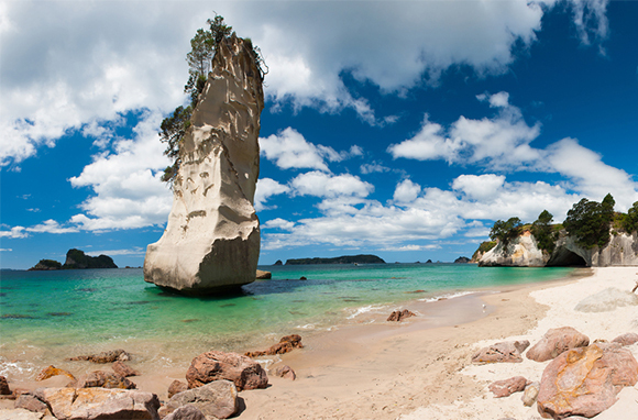 Explore the Wonders of Cathedral Cove