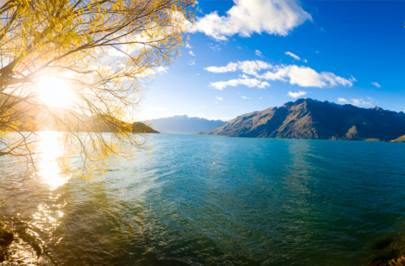 See This Sunrise on Lake Wakatipu