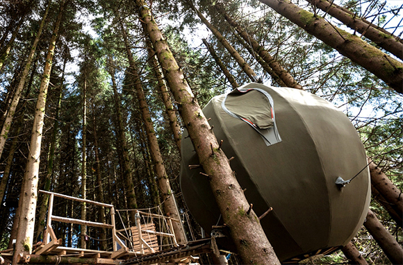 Tree-House Pod, Builth Wells, Wales