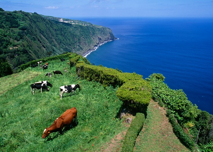 10 Flavorful Reasons to Visit the Azores