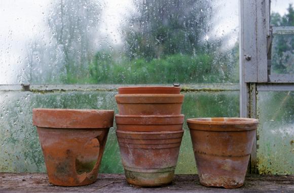Have Bad-Weather Backups