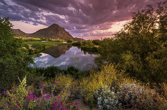 Scottsdale, Arizona