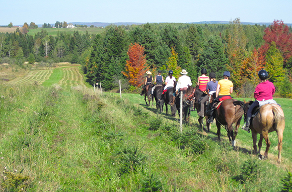 Horseback Riding in Quebec