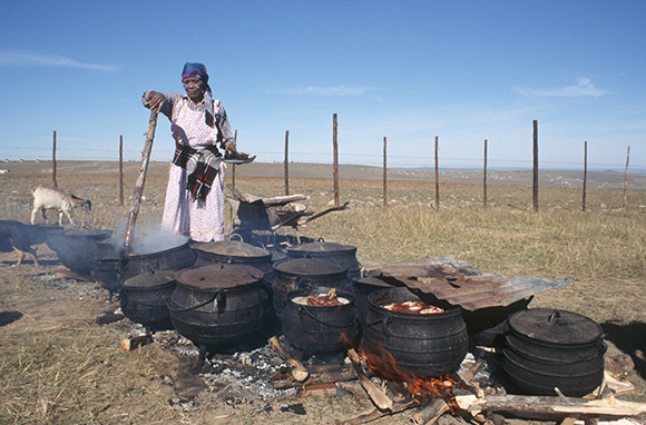 Pot Food in South Africa