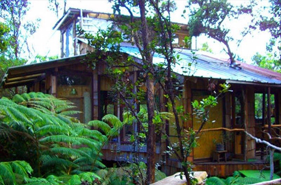 A Luxury Tree House in Hawaii for $45 Per Person, Per Night