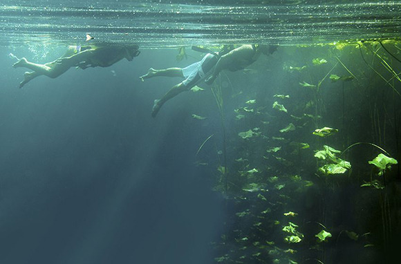 Cenote Snorkeling, Mexico