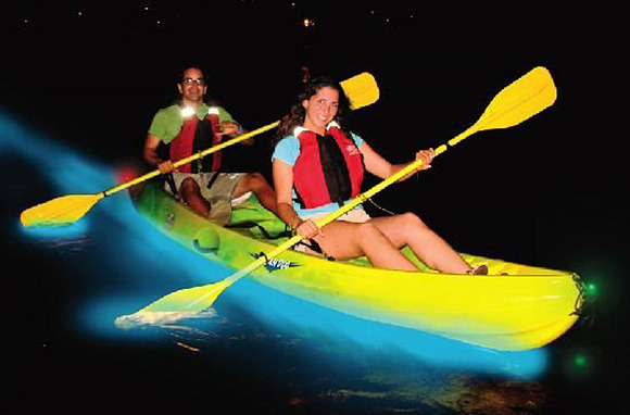 Kayaking in a Bioluminescent Lagoon, Puerto Rico