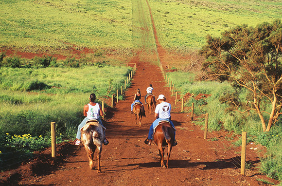 Molokai Opens Its Doors