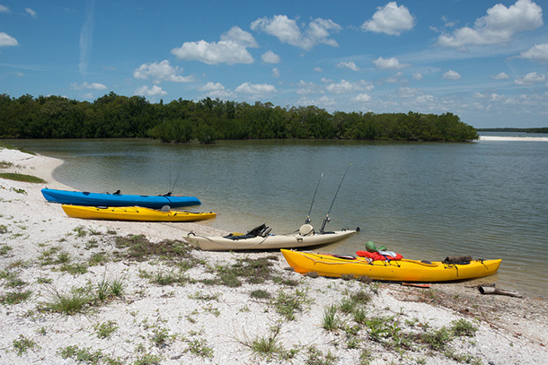Arm Strengthening and Character Building: Kayaking in Southern Florida