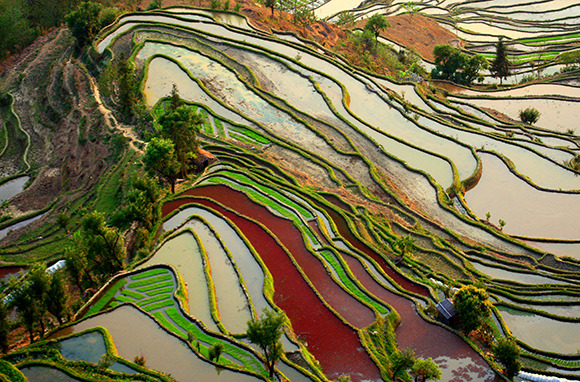 Honghe Hani Rice Terraces, Southern Yunnan Province, China