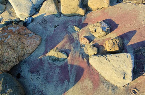 Purple: Pfeiffer Beach, Big Sur, California