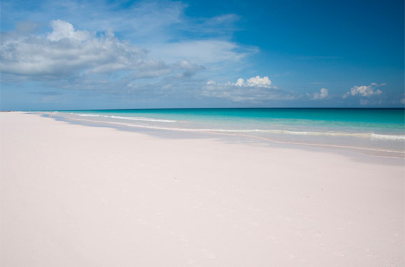 Pink: Pink Sands Beach, Harbour Island, Bahamas