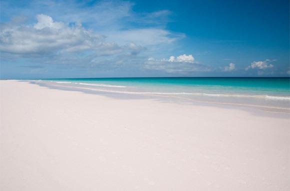 Pink: Pink Sands Beach, Harbour Island, Bahamas