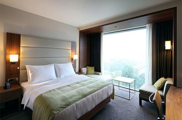 Reserve a Hotel Room or Rent a Car