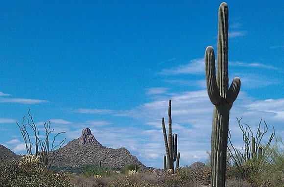 Pinnacle Peak, Scottsdale, AZ