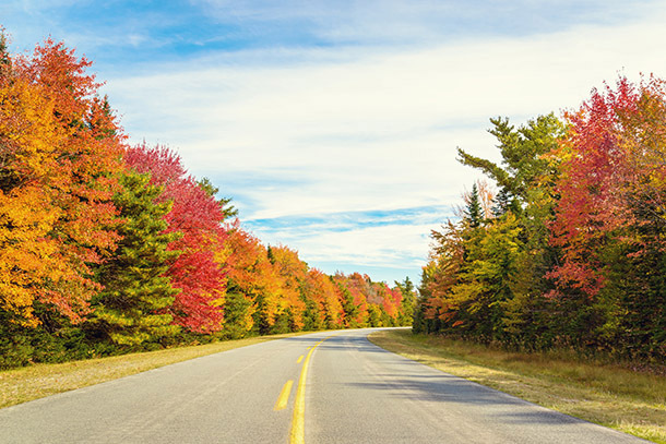 10 Last-Minute Road Trips for Columbus Day Weekend