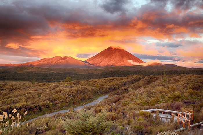 7 Things No One Ever Tells You About New Zealand